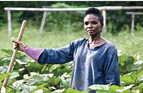Racism, Land & The American Farming Landscape